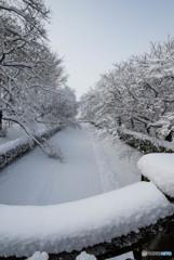 いつもの公園、「雪景色」(3)