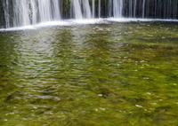 NIKON NIKON D600で撮影した(涼感、白糸の滝)の写真(画像)
