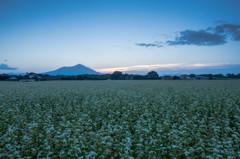 - 蕎麦畑のヨロコビ -
