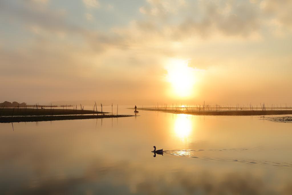 印旛沼百景-008