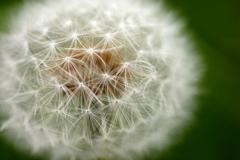 超新星爆発(^-^;・・・