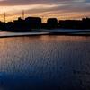 松原の夕焼け④
