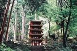 室生寺の初夏①