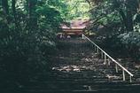 室生寺の初夏④