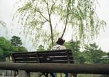 黄昏れて猿沢池