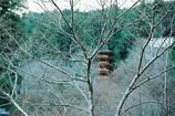 長谷寺冬景①