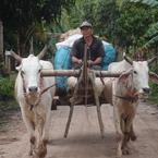カンボジア・とある村で