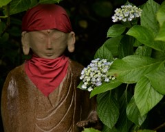 仏と紫陽花(パートⅡ)