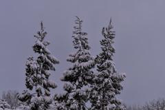 work of snow 5