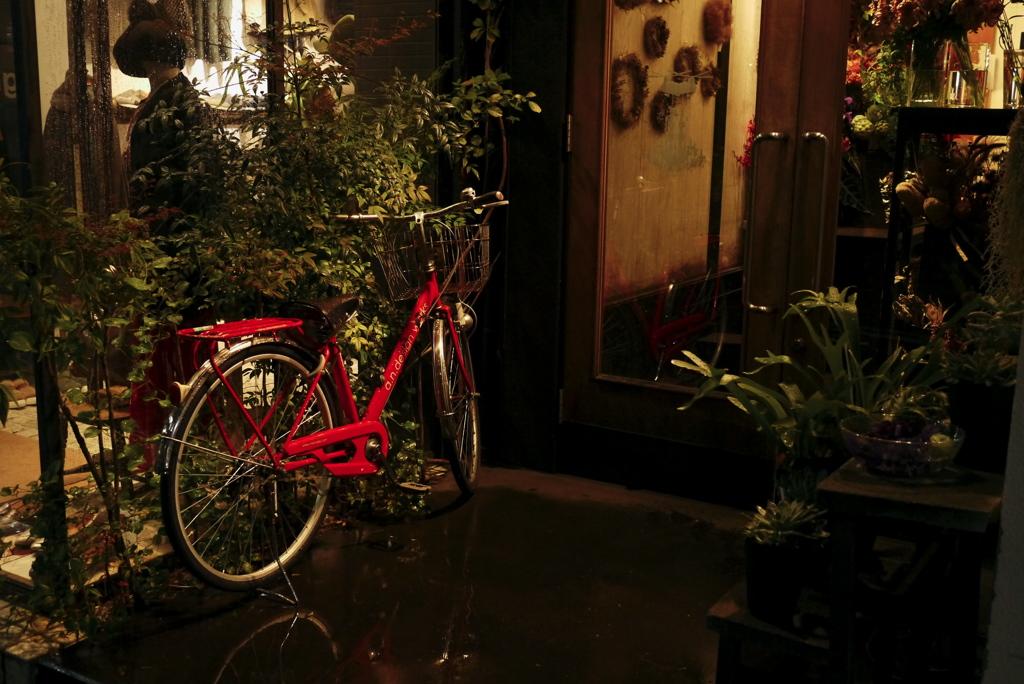 雨降る街角