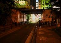 PANASONIC DMC-GX1で撮影した(蝶夜燈)の写真(画像)