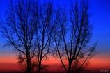 渡良瀬の夜明け