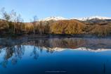 まいめの池の朝