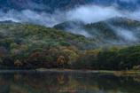 朝霧沸き立つ鏡池