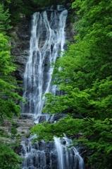 唐沢の滝、上段の流れ