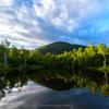 朝陽差し込む「まいめの池」