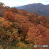 谷川岳の紅葉2