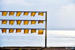 黄色のハンカチのある風景