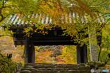 紅葉と黒門