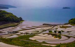 棚田と海の絶景