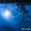 冬枯れ-シルエット