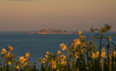 水仙公園から軍艦島を望む