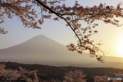 春陽に煌めいて~5DⅣ ver.~