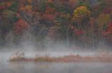 秋色煙る湖畔