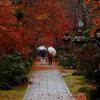秋をつむぐ