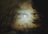 寒のお月見