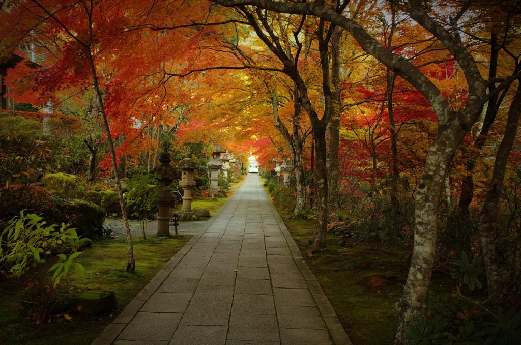 山本不動尊:魅惑の参道