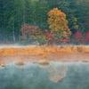 彩秋の冷気