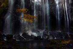 静寂の中の秋