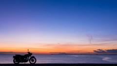 東京湾ブルーモーメント
