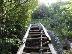 頂上へ続く道