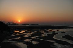 新舞子浜の初干潟