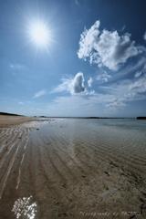 ニシ浜の日常
