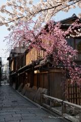 古都の春便り