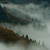 朝霧の渓谷#2