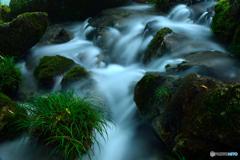 夏の伏流水