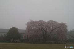 映画「母べえ」旧山本中学校 通称「杵原学校」