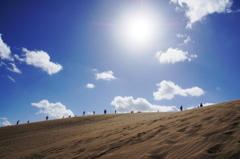 砂丘Wonderland