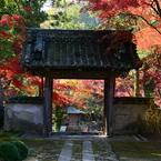 NIKON NIKON D800で撮影した(大本山永平寺御直末五鈷山光明寺)の写真(画像)