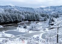 大地の雪景色