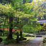 RICOH GR Digitalで撮影した風景(羽黒山)の写真(画像)