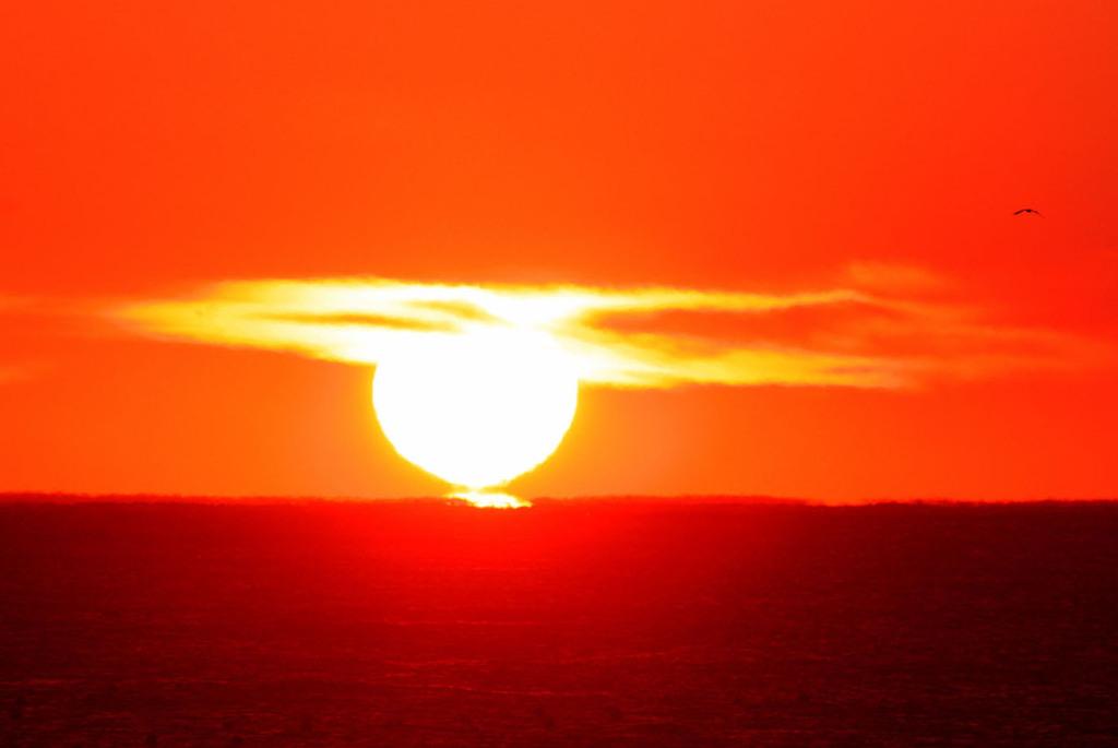 日の出・三陸海岸