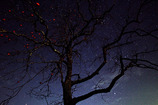 初冬の夜空