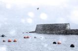 風雪の漁港