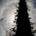 CANON Canon EOS Kiss Digital Xで撮影した風景(龍、天に昇る)の写真(画像)