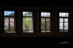 或窓、春夏秋冬